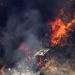 聖荷西山火 毀47英畝地、2建物  看家狗喪命