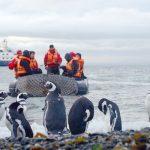 南極洲探險之旅拉丁假期11月出發