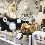 加州博覽會揭幕宇洛縣攤位特色景觀吸睛