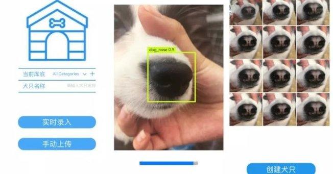 中國一家人工智慧創業公司,將辨識的技術運用在毛小孩身上。(取材自曠視科技)