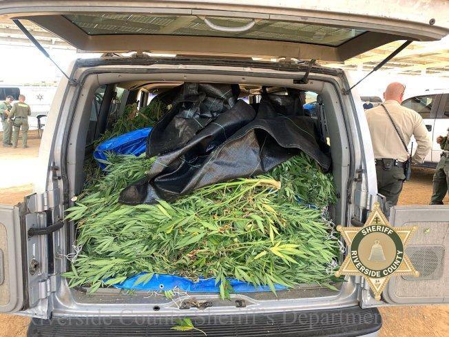 河濱縣警18日再次大規模出動掃48處非法大麻窩點。(圖片取自縣警推特)