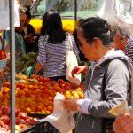 市府增撥980萬 提高低收入者福利