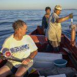 史大:氣候、洋流變化致巨魷業衰落