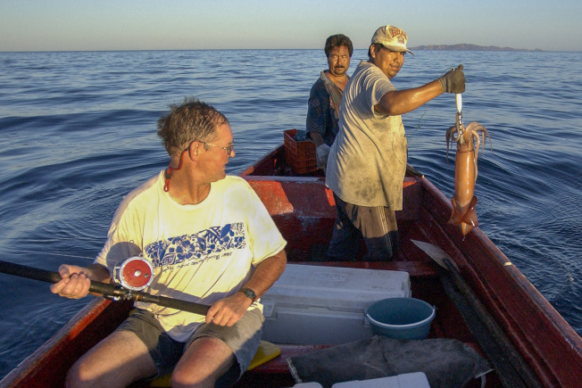 生物學教授吉利(左)和兩名漁民捕捉了一隻用於研究的洪堡魷魚。(取材自史大校園網)