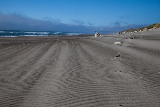 寧靜的巴拉德海灘州立公園。