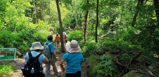 雲鶴社健行組走進枝葉扶疏的林間步道。(記者唐嘉麗/攝影)