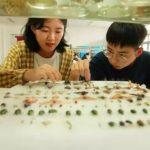 另類暑假作業…浙江農林大學生 「活捉」上萬隻昆蟲