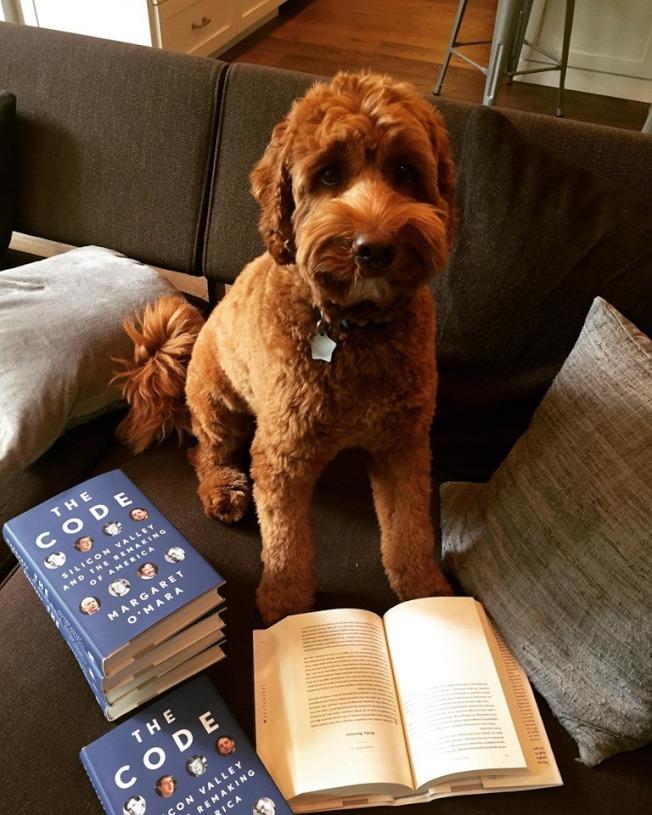 矽谷歷史新書「編碼」上市,就連作者歐瑪拉的愛犬也來拜讀。(取自臉書)