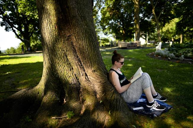 熱浪席捲全美,有人在費城公園樹蔭下靜靜看書,心靜自然涼。(Getty Images)