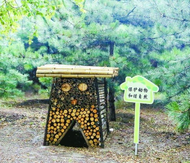 萌萌的「昆蟲旅館」為昆蟲提供了棲息、越冬場所。(取材自北京日報)