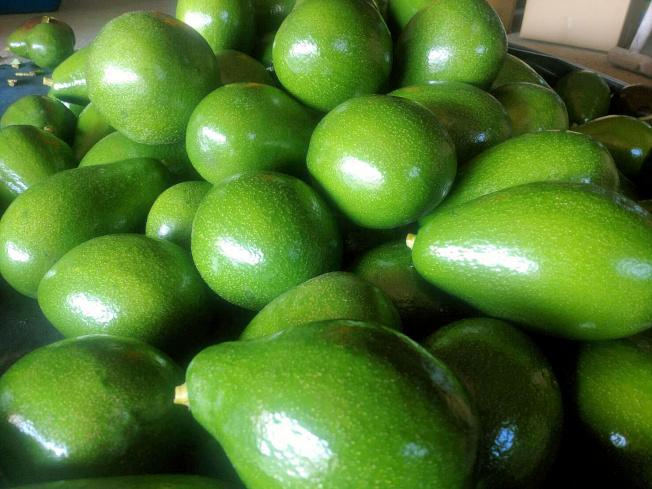 酪梨含有抗發炎抗氧化劑。(本報資料照片)