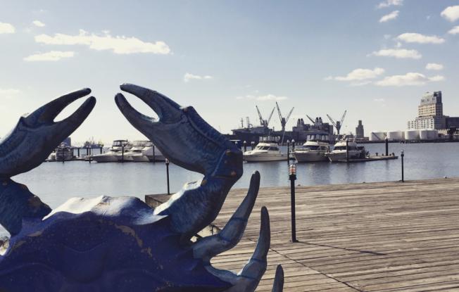 馬州巴爾的摩港灣是知名觀光區,適合旅遊,但最近被評價不適退休族定居。(記者許惠敏/攝影)