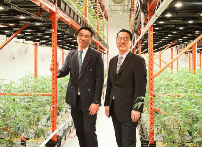 律師出身的James Chung(左)和Conrad Yun(右)雙雙自哈佛畢業,如今開設洛市首家漢麻種植場。(圖片由James Chung提供)