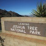 約書亞國家公園80%樹木  恐在本世紀消失