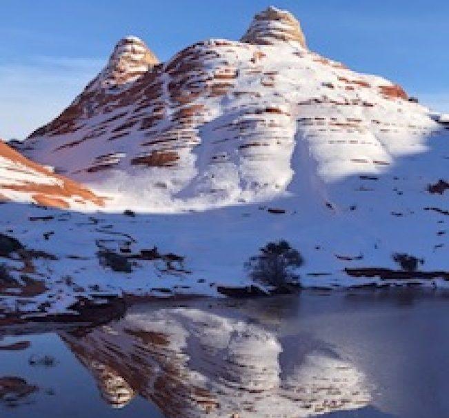 白雪映襯下、色彩艷麗、富有韻律的水中倒影。