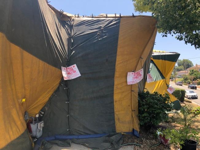 白蟻公司派員用彩色帆布把整棟房子包起來,再灌入殺白蟻的有毒氣體,並在房屋四周掛上危險氣體熏蒸Danger Peligro Fumigation的警告標誌。(記者胡清揚/攝影)