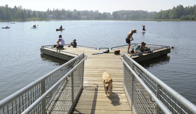 阿拉斯加今年夏天出現創紀錄酷熱,圖為安克拉治當地居民和遊客7月初在迪龍湖戲水,出現北國難得的夏日景象。(美聯社)