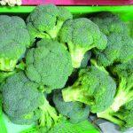 綠花椰保護腸道 還能抗癌