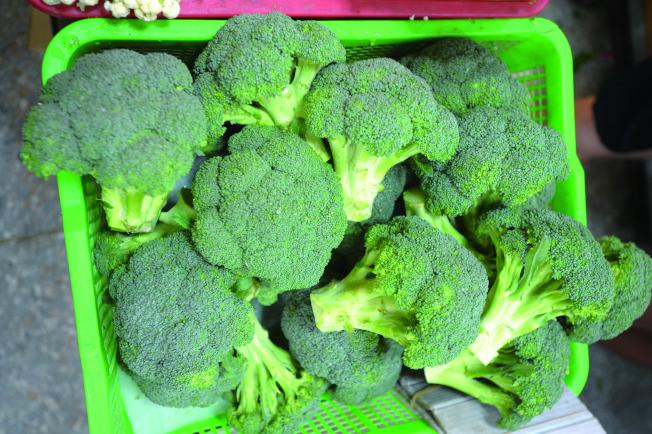 綠花椰菜堪稱「超級蔬菜」。(本報資料照片)