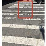 班森賀86街坑洞修補不力 寇頓怒斥交通局