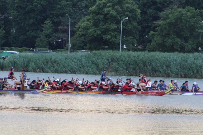 龍舟隊員在湖上奮勇拚搏。(記者朱蕾/攝影)