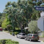 南聖荷西社區蛇出沒 暫停送信