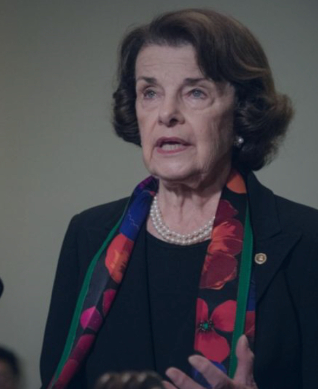 聯邦參議員范士丹批評共和黨在國會阻撓各項槍管法案。(范士丹辦公室提供)