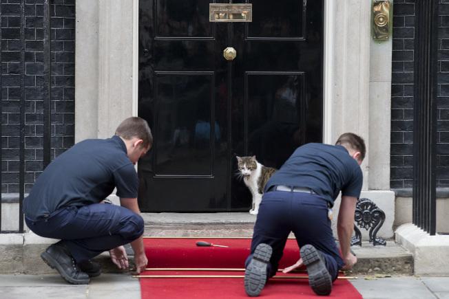 賴瑞看著工作人員擺設紅毯,俄國總統普亭是下一個來訪的賓客。(Getty Images)