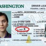華州駕照、身分證承認第三性 通過聽證就可實施