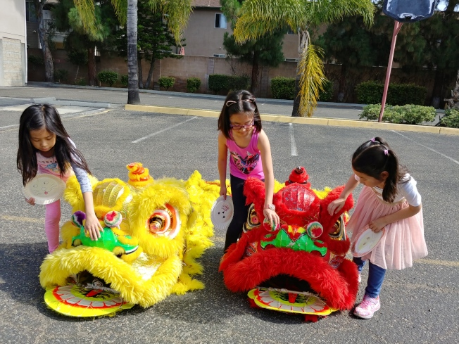 富樂頓中文學校學生學習舞獅。(富樂頓中文學校提供)