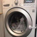 爬進洗衣機 3歲童「被洗2分鐘」嚇壞