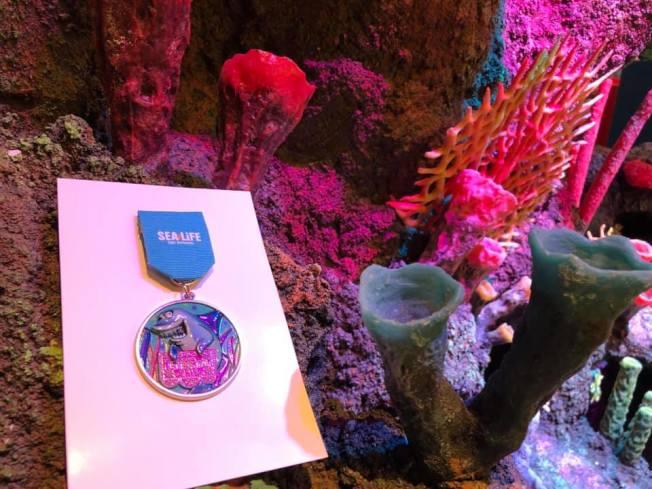 聖安東尼奧的一間新水族館「海洋生命水族館」將於今年秋初開幕。(取自海洋生命水族館臉書)