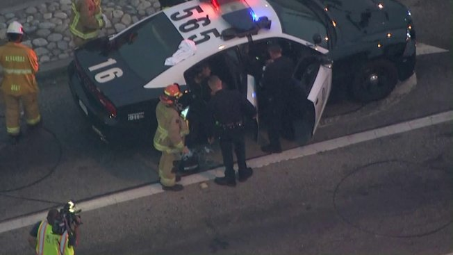 盜竊垃圾車的嫌犯Brian Wayne Haddock遭洛杉磯市警局警員逮捕。(取材自KTLA)