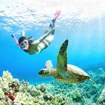 夏威夷遊客溺斃數 本地人8倍
