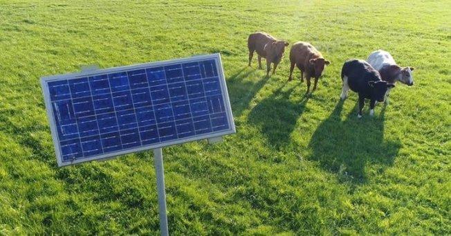 研究發現,把全球農田1%設太陽能即可滿足全球用電。(取材自shutterstock)