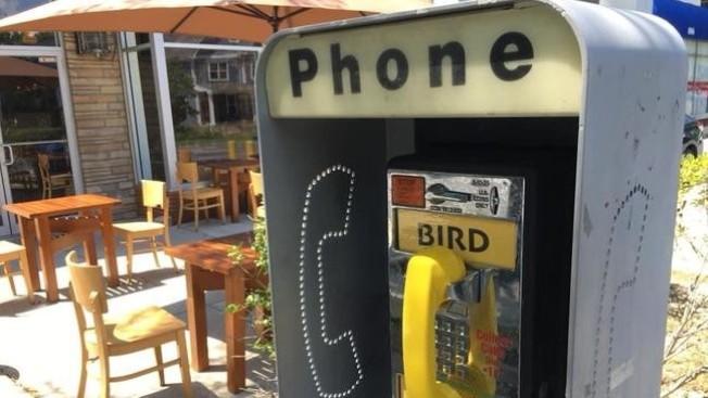 塔科馬公園市的一個老舊電話亭變身藝術品,收集各種當地鳥類叫聲,民眾提起話筒撥打電話能欣賞各種不同的小鳥鳴叫。(取自WJLA)