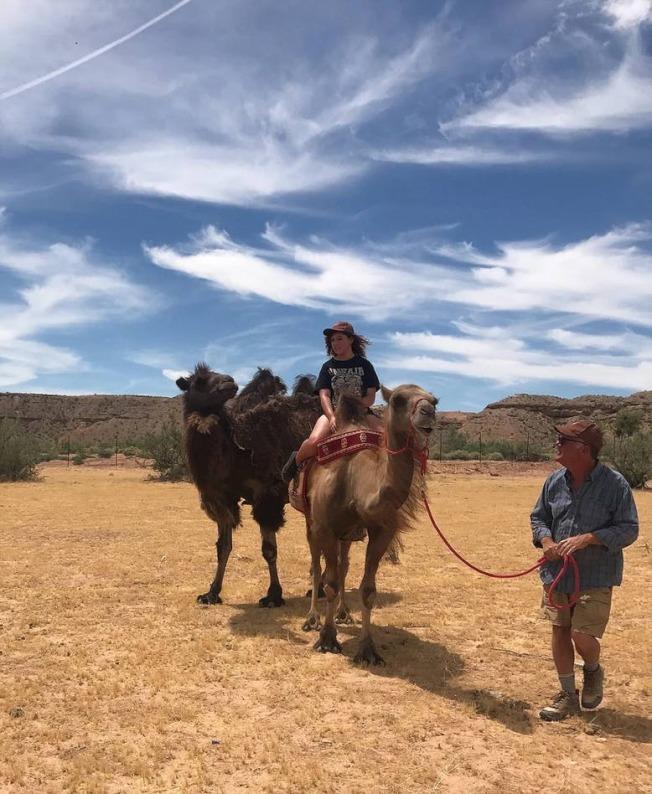 賭城北郊出現新的度假休閒方式,騎駱駝、住蒙古包。(Camel Safari官網)