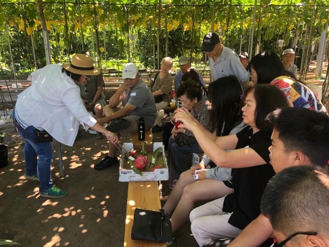 園藝愛好者圍坐了解多肉植物。(記者張宏/攝影)