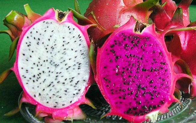 燥熱體質的民眾可多吃火龍果。(本報資料照片)
