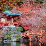 美加旅遊推出日本關東關西九州溫泉美食賞楓11天