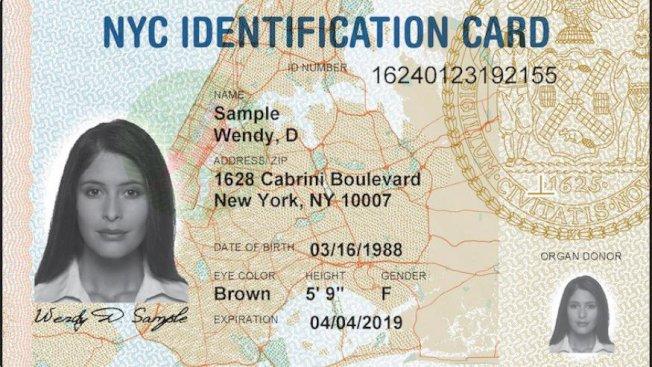 紐約市民卡新規提案於21日進行,不少民眾都認為能夠直接網路申請及更新卡片,相當便民。(本報檔案照)