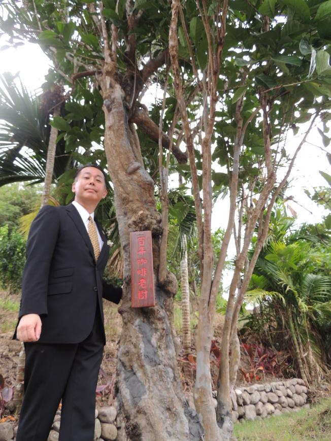 柴田裕在可能是已故爺爺種下的百年咖啡樹前留影。(記者羅紹平/攝影)