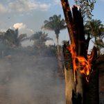 亞馬遜大火是人為 巴西總統被批放任濫伐