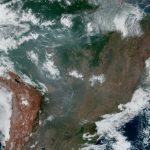 亞馬遜雨林進入死亡螺旋?專家:恐非洲草原化