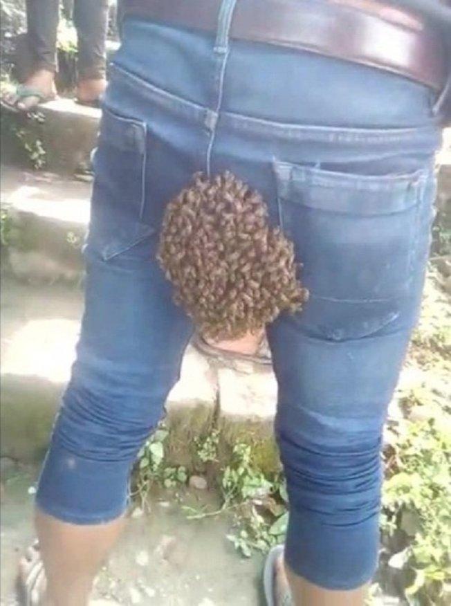 印度東部納迦蘭邦的科希馬(Kohima, Nagaland)20日發生一樁奇事,一名男子的臀部竟成為蜂群的家,讓旁人笑到樂不可支。路透