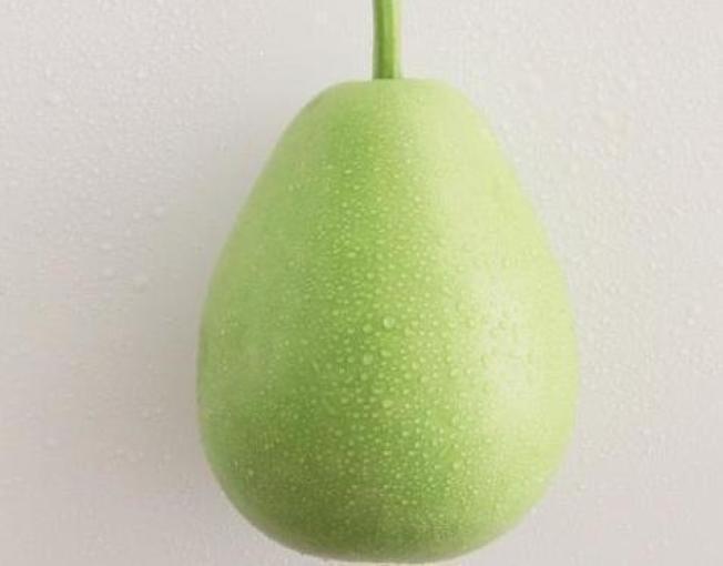 扁蒲熱量低,可作為減肥食材料理。 圖片提供/台灣好食材(來源:《餐桌上的蔬菜百科》、《水果做醬變好菜》、楊慧玉)