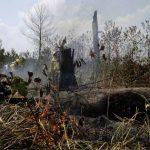 搶救地球之肺 G7領袖同意 援助亞馬遜大火受災國