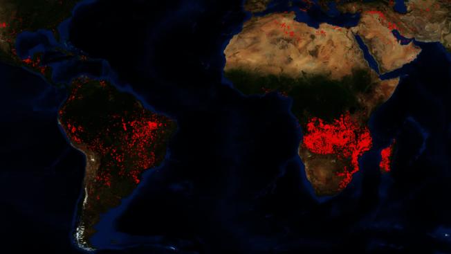 NASA在25日公布的衛星圖像,從加彭到安哥拉一帶的中非地區的野火,明顯比亞馬遜更為密集、廣泛。(取材自NASA)
