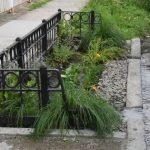 紐約市防洪 將建5000路邊綠地 估每年可集水5億加侖