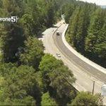 17號公路大規模修剪樹林 估花4個月